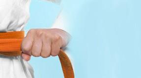 Talente am Lessing: Judoka auf den vordersten Plätzen