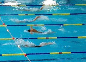Schwimmen: Medaillenregen bei den  Verbandsmeisterschaften auf der Kurzbahn