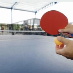 Zweifacher Sieg des Lessing-Gymnasiums beim Pausenkönigfinale am 5.9.21 im Tischtenniszentrum der Borussia-Düsseldorf
